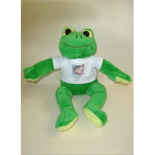 Frog Teddy Soft Toy