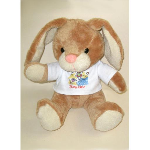 Rabbit Teddy Soft Toy
